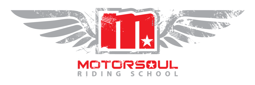 Motorsoul logo red and grey wings